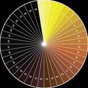 Colores de la cerveza