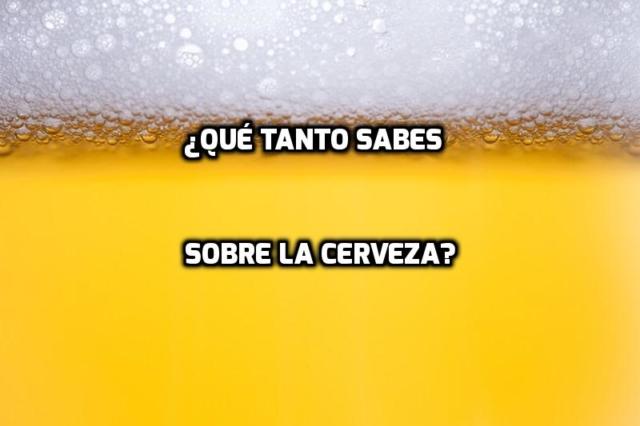 Quiz sabelotodo cerveza sabihondo examen examinación divertido diversión