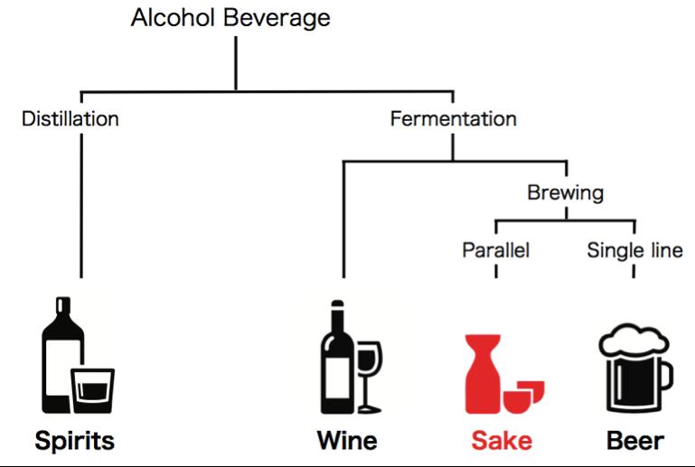 Clasificación del sake como bebida alcohólica y su lugar respecto al vino, licores, destilados, bebidas espirituosas y la cerveza. Es una bebida fermentada y brewed, pero única y especial.